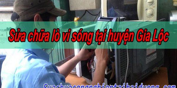 Dịch Vụ Sửa Chữa Lò Vi Sóng Tại Huyện Gia Lộc 24/7