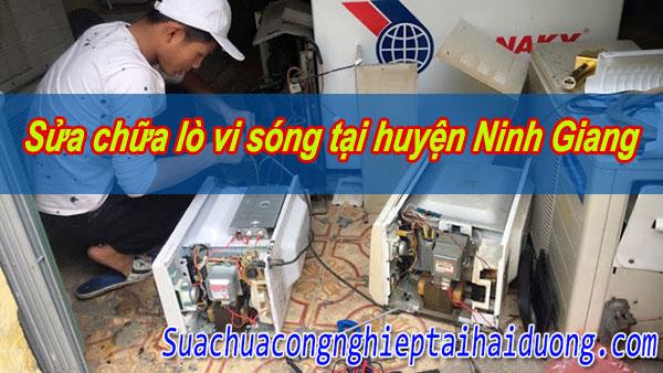 Sửa chữa lò vi sóng tại huyện Ninh Giang